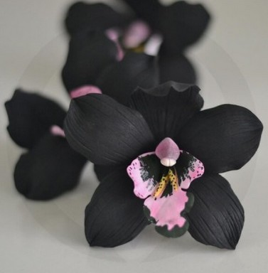 tableau orchidée noire